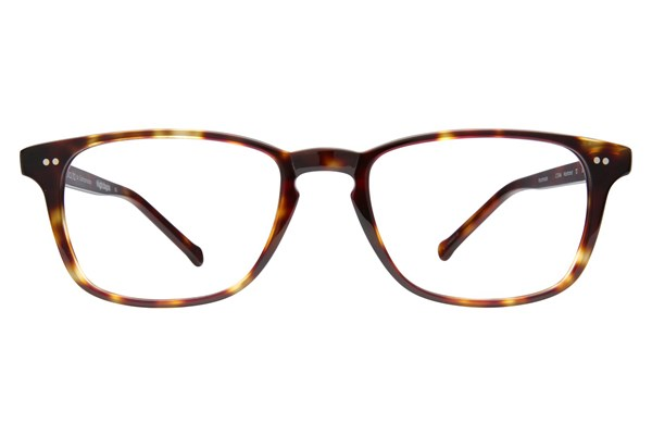 Colors In Optics Nostrand Tortoise Eyeglasses
