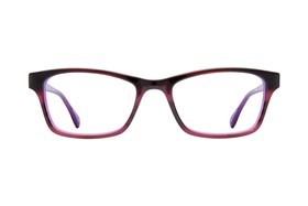 Bloom Optics Petite Sarah Tortoise