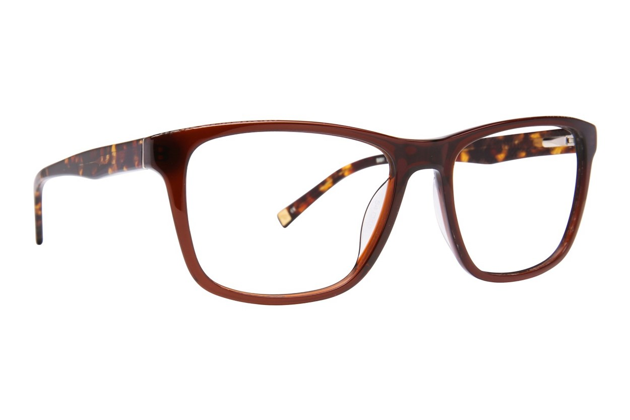 Ted Baker B891 Eyeglasses - Brown