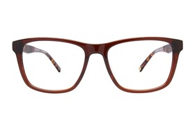 Ted Baker B891 Brown