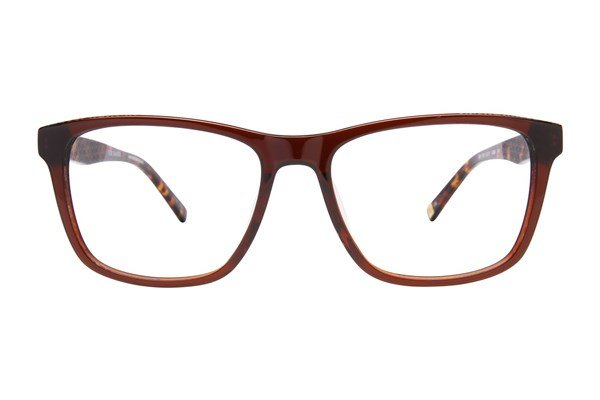 Ted Baker B891 Brown Eyeglasses