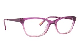 Ted Baker B948 Purple