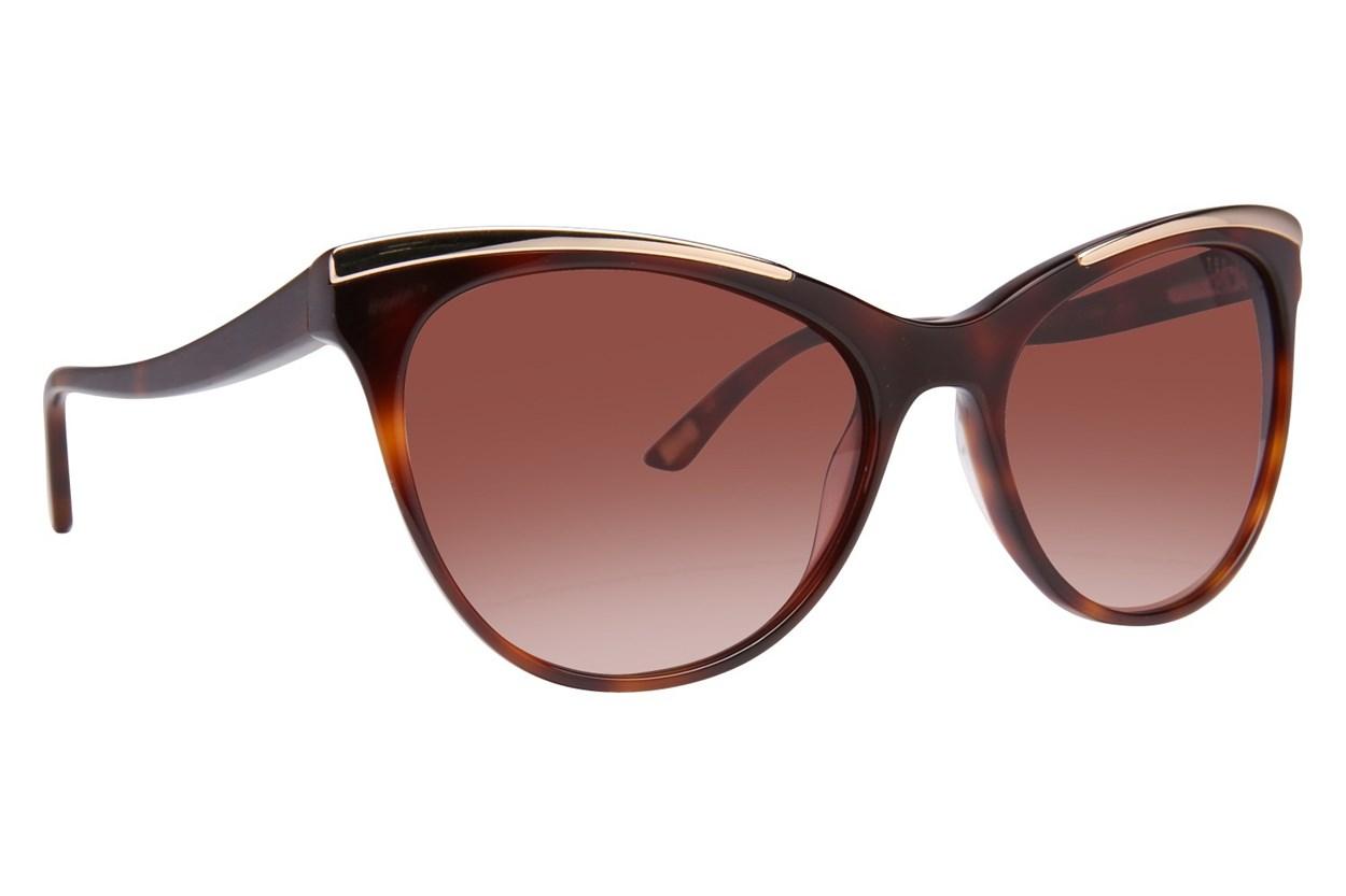 Ted Baker TB107 Tortoise Sunglasses