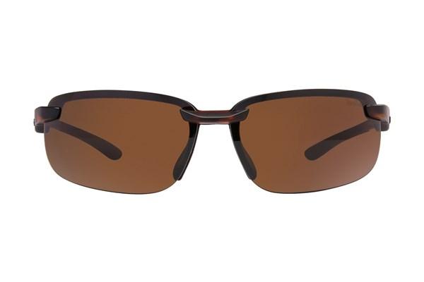 Bolle Attraxion Sunglasses - Tortoise