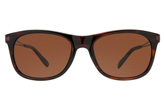 Serengeti Pavia Tortoise Sunglasses