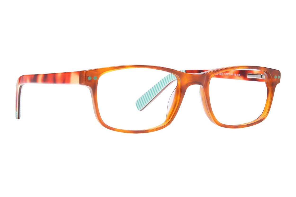 Picklez Duke Tortoise Eyeglasses