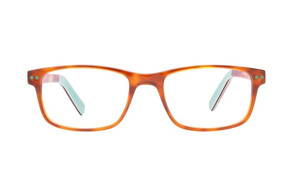 Picklez Duke Brown Eyeglasses