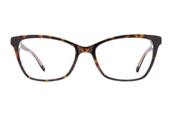 Via Spiga Dulcina Tortoise Eyeglasses