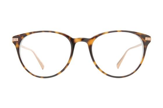 Ted Baker B749 Tortoise Eyeglasses