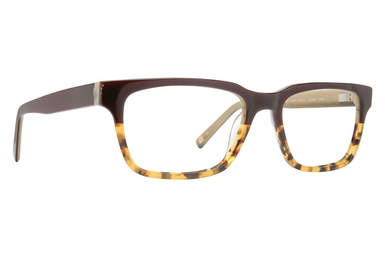 Ted Baker B889 Tortoise Eyeglasses