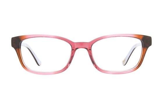 Ted Baker B954 Brown Eyeglasses