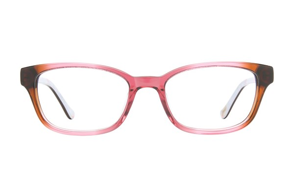 Ted Baker B954 Eyeglasses - Brown
