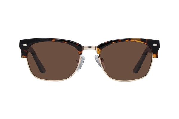 Picklez Harley Tortoise Sunglasses