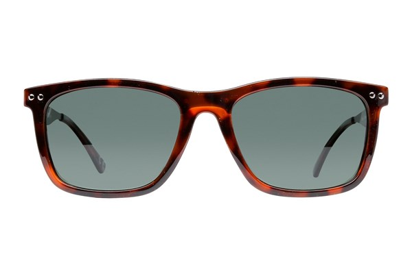 Anarchy Regi Polarized Brown Sunglasses