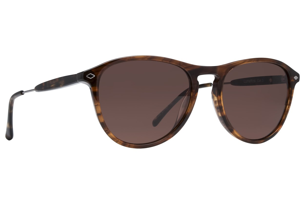 Lunettos Emery Brown Sunglasses