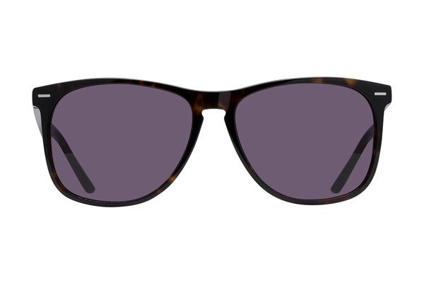Lunettos Armstrong Sunglasses - Tortoise