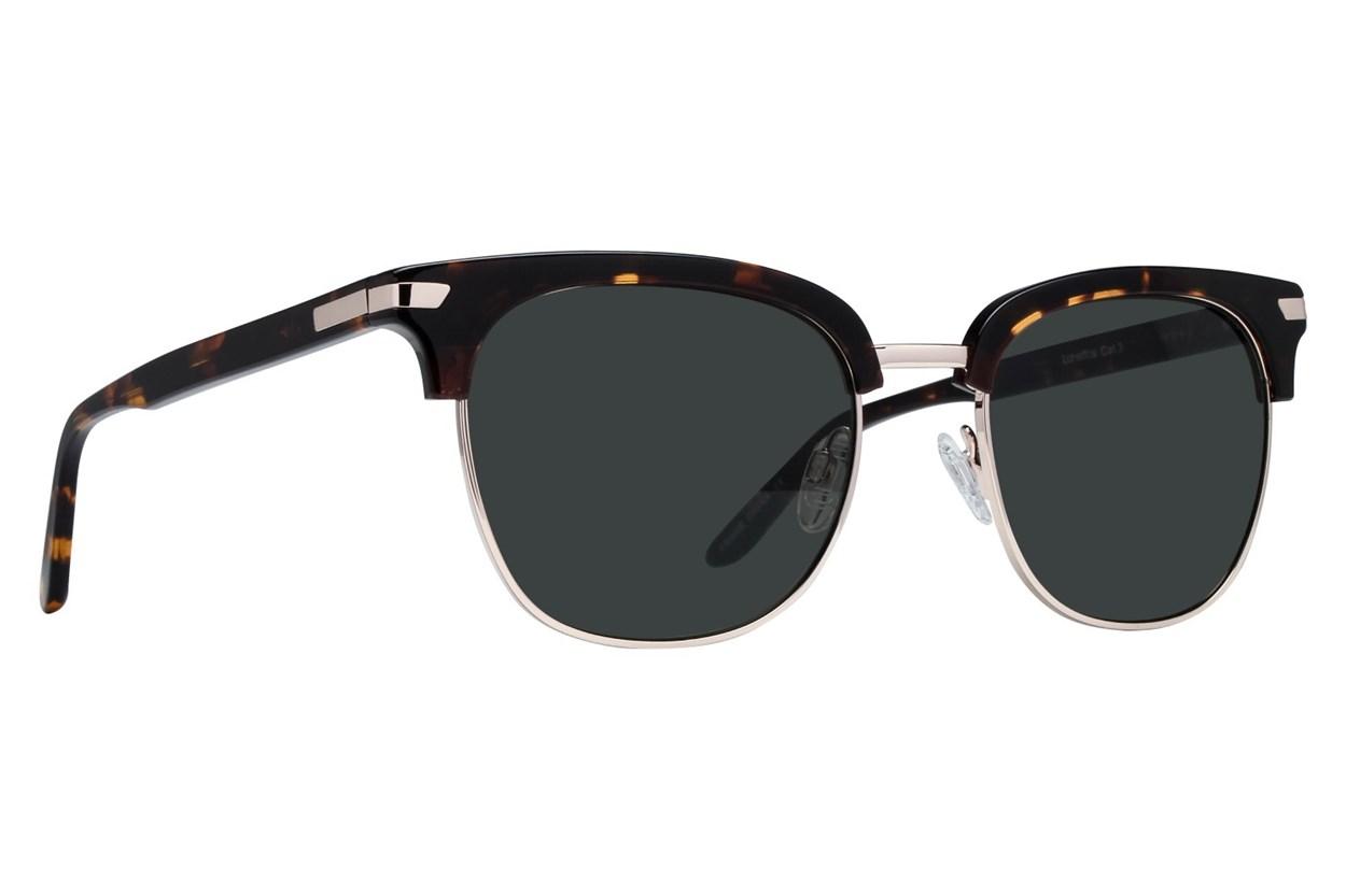 Lunettos Glenn Tortoise Sunglasses