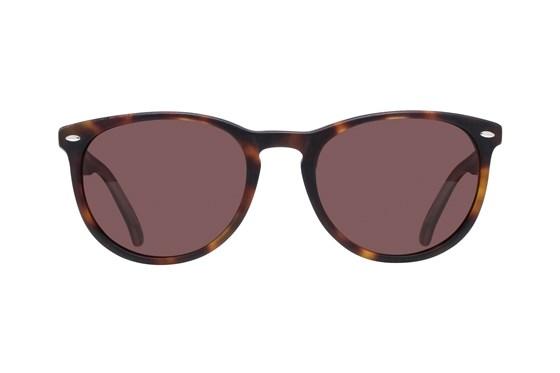 Lunettos Sol Tortoise Sunglasses