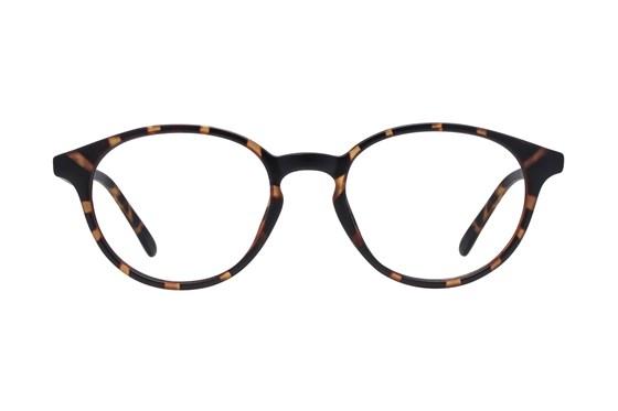 Lunettos Vesper Tortoise Eyeglasses