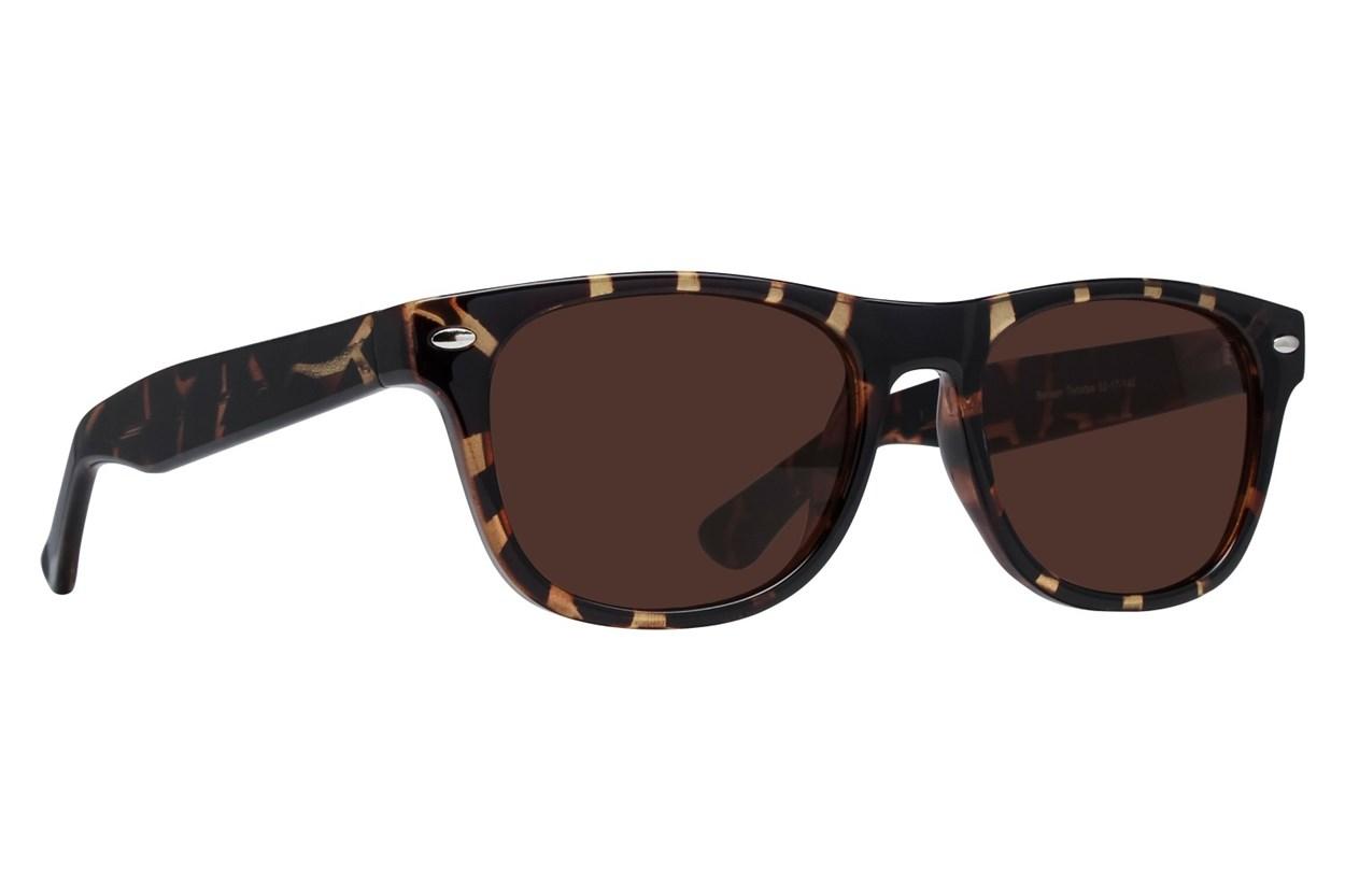 Lunettos Benson Tortoise Sunglasses