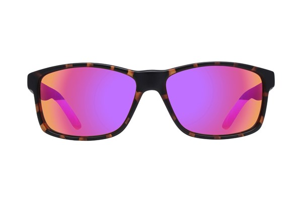 Lunettos Chris Tortoise Sunglasses