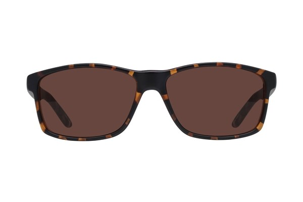 Lunettos Chris Sunglasses - Tortoise