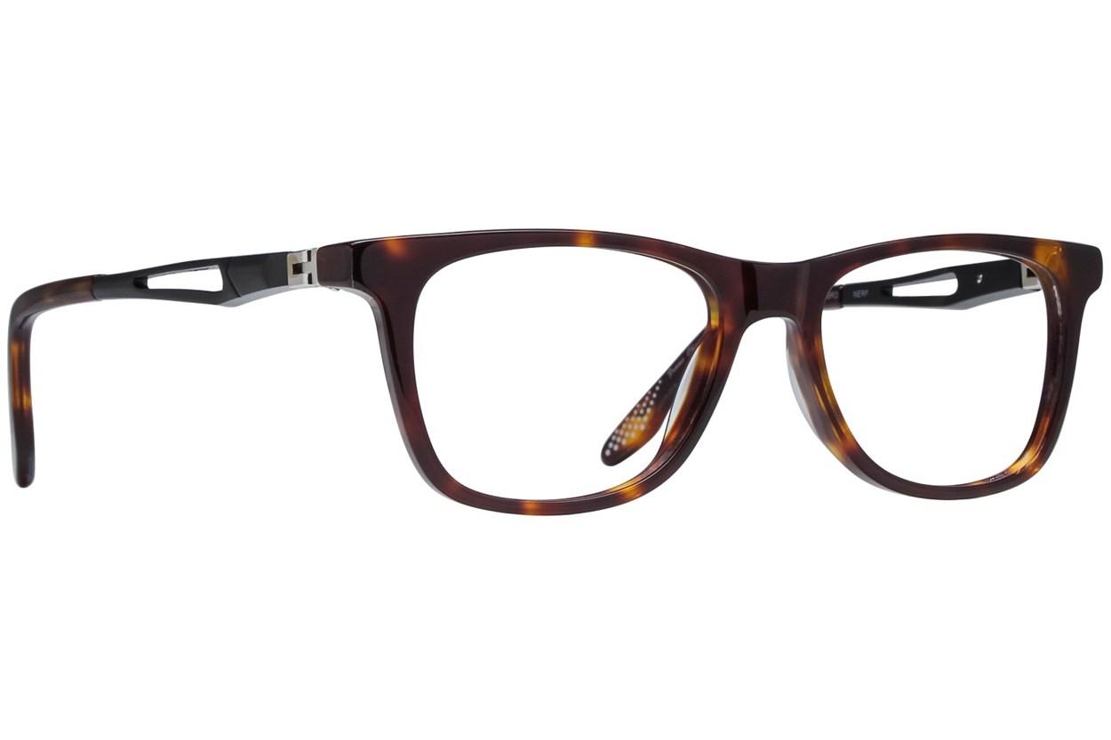 NERF Carl Tortoise Eyeglasses