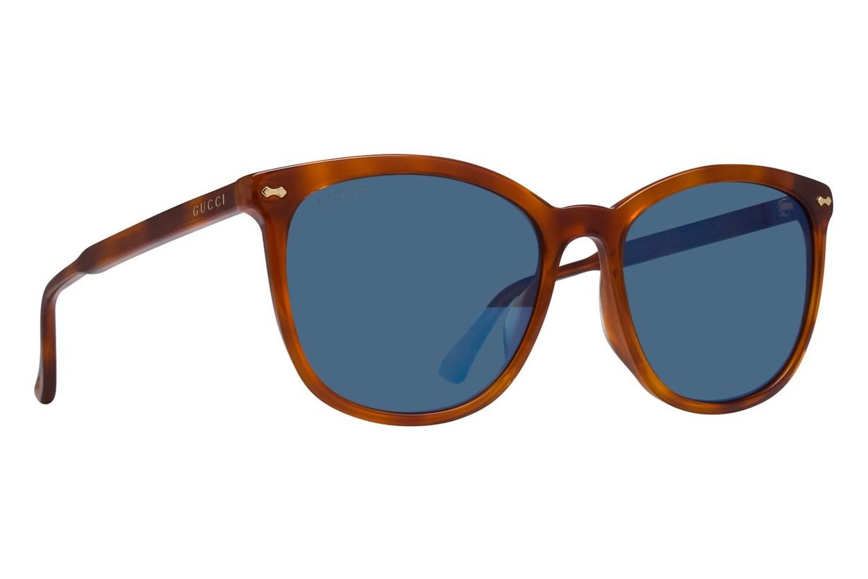 Gucci GG0196SK Tortoise Sunglasses