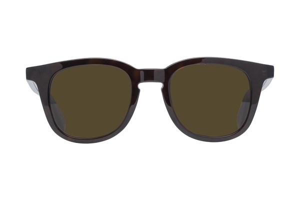 Saint Laurent SL143 Sunglasses - Tortoise