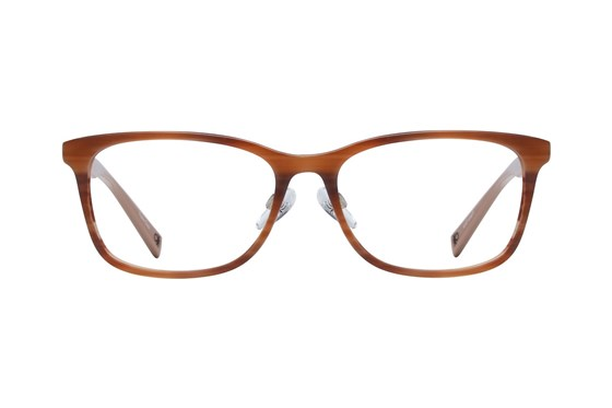 United Colors of Benetton BEO1005 Brown Eyeglasses