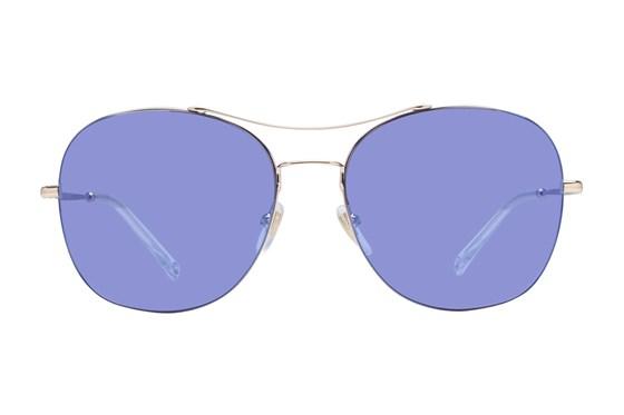 Gucci GG0501S Gold Sunglasses