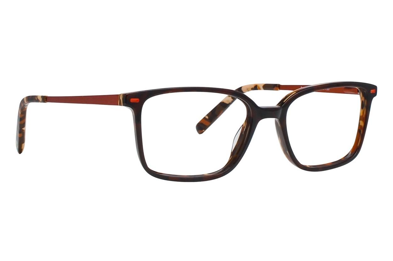 Picklez Angus Brown Eyeglasses
