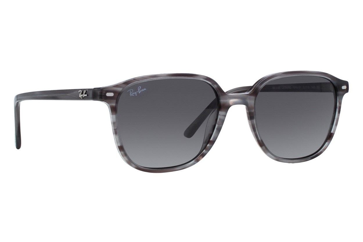 Ray-Ban® RB2193 Leonard Gray Sunglasses