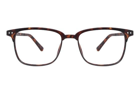 Lunettos Shawn Tortoise Eyeglasses