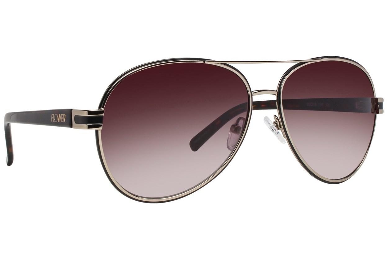 Flower Eyewear Casey Gold Sunglasses